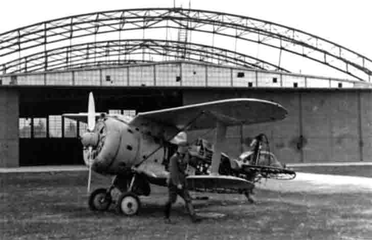 "Damaged I-153 ""Chaika"" biplane"