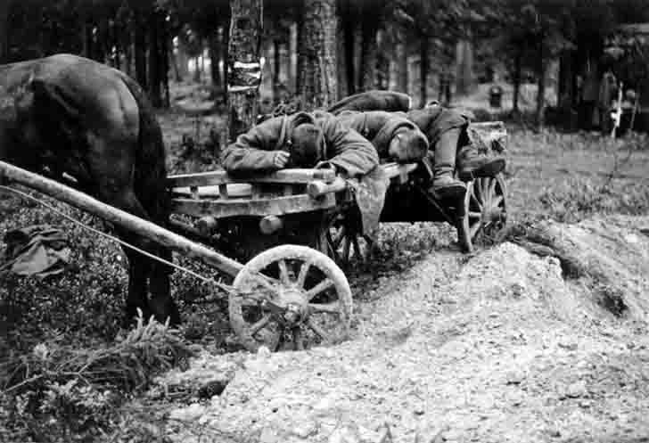 The cart with the bodies of dead soldiers of the Red Army