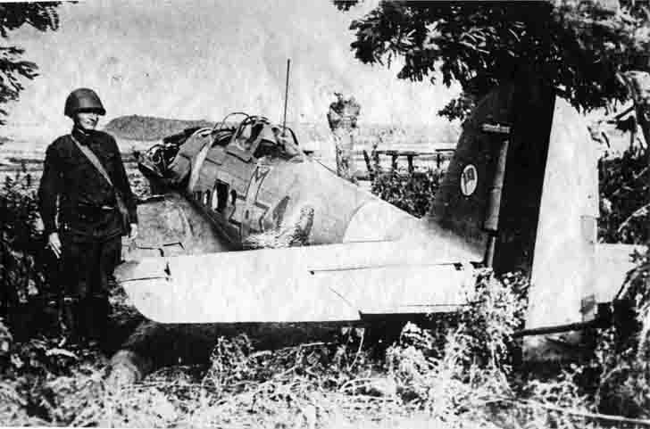 Downed Romanian He-112B-2 fighter