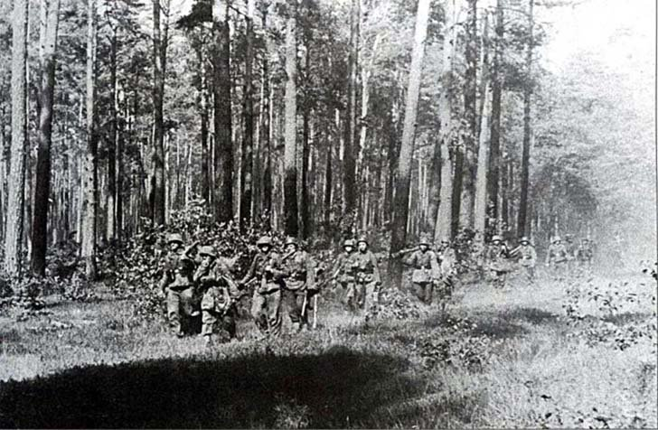 German soldiers in the Belarusian forest