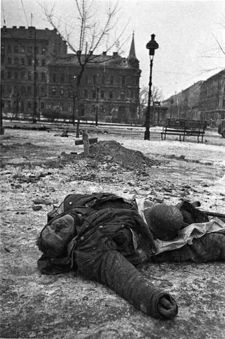 Murdered a German soldier in Vienna