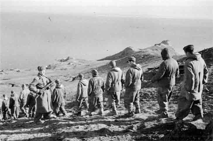 A column of German prisoners of war in the Crimea