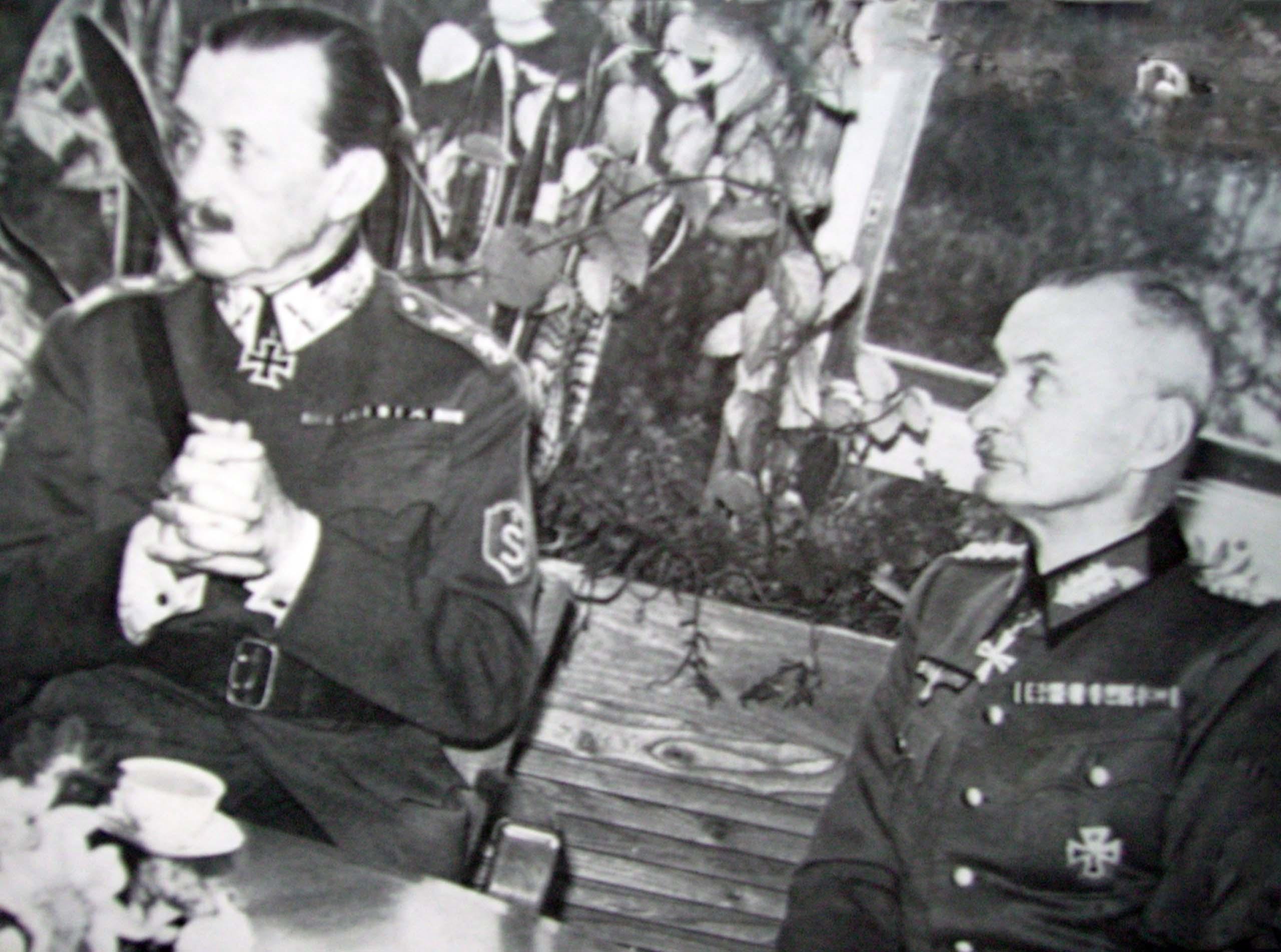 Carl Mannerheim, Waldemar Erfurth