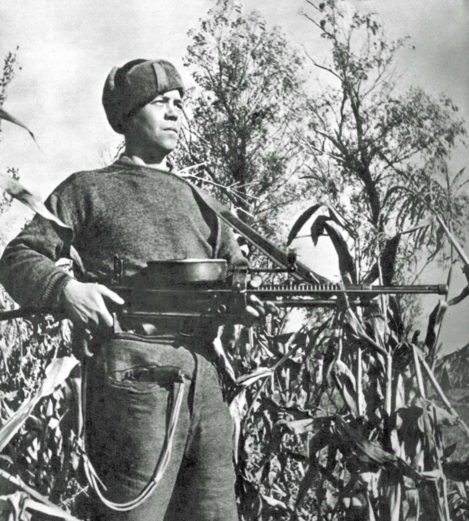 machine gun DT-29