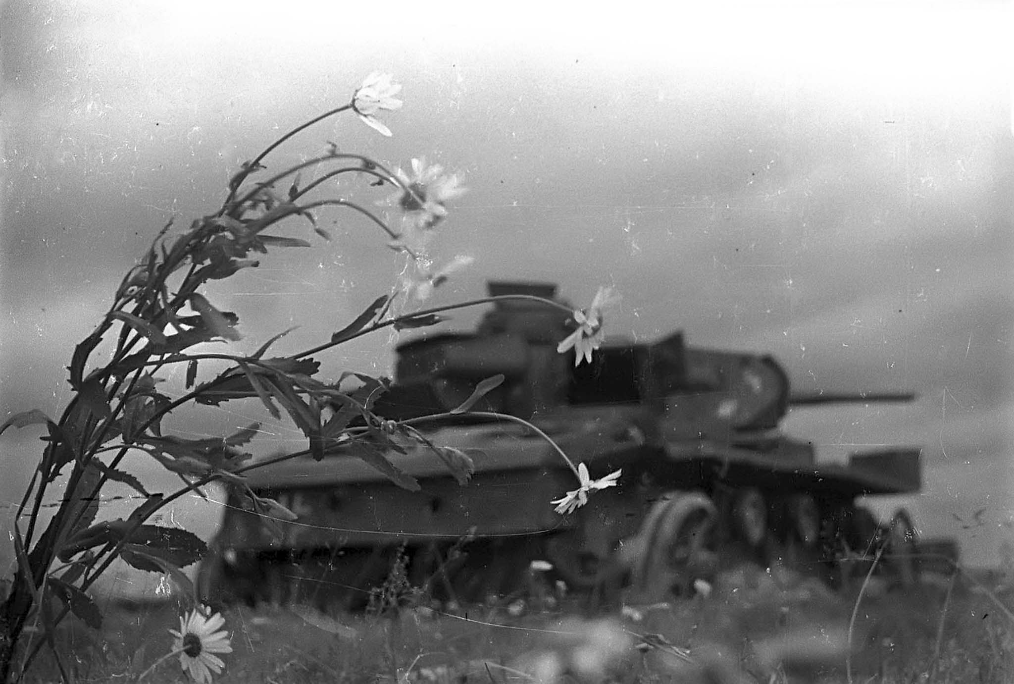 Destroyed German tank