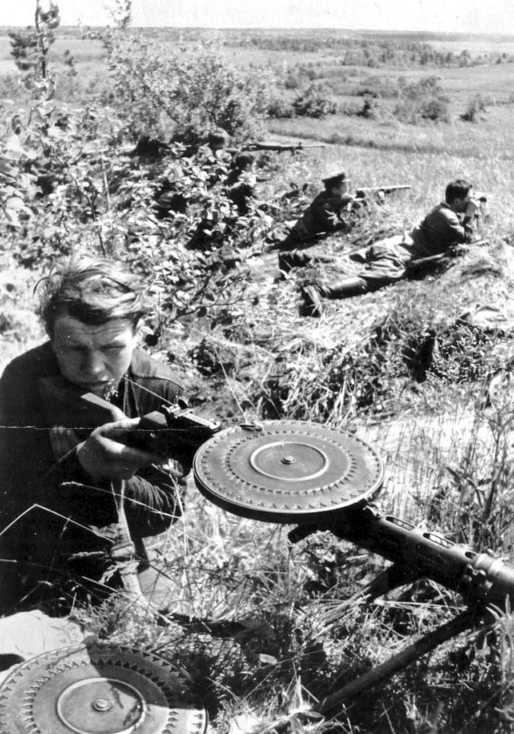 partisan brigade