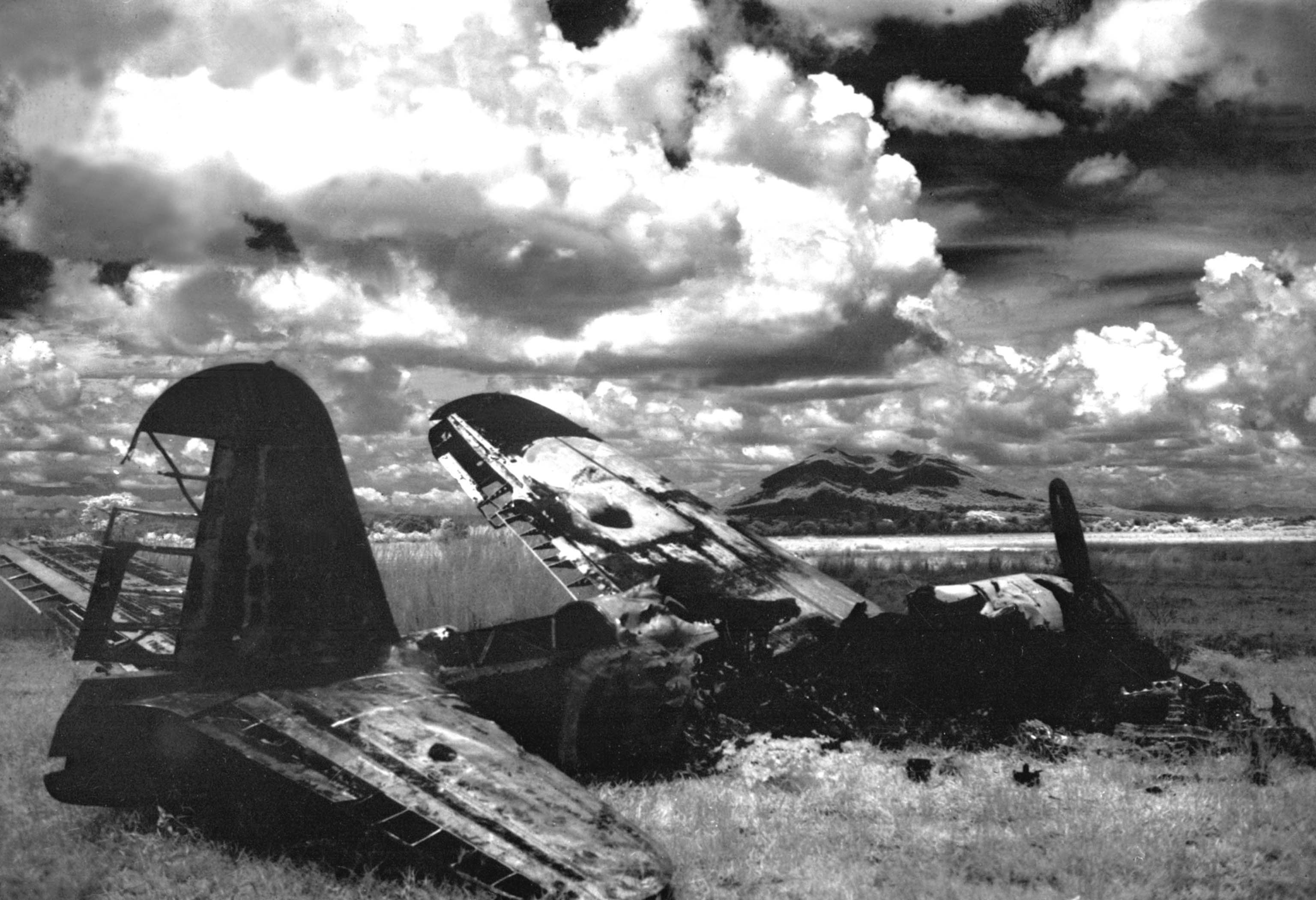 downed Japanese plane