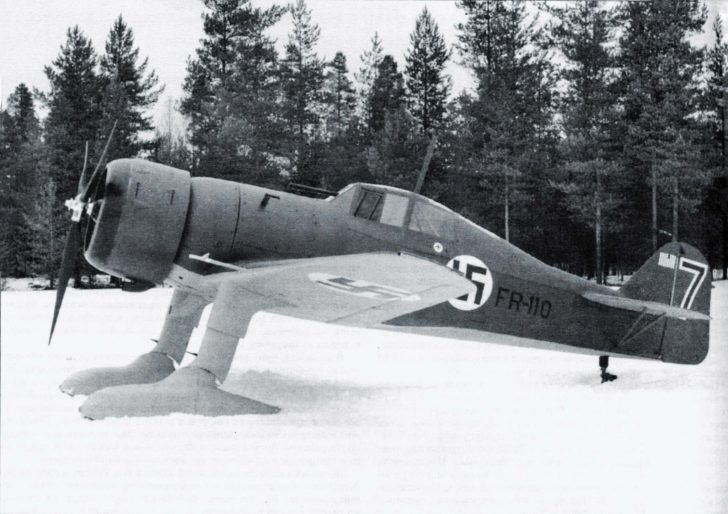 Fokker D XXI  Fighter