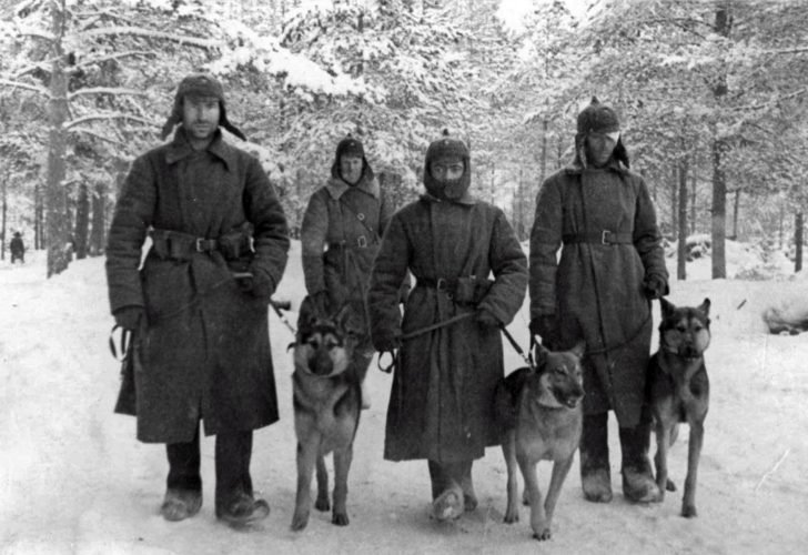 Soviet military dog breeders