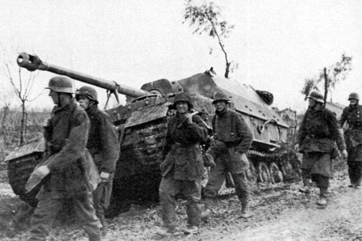 Hermann Goering Division, Elephant