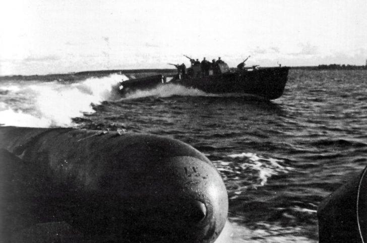 D-3 torpedo boats