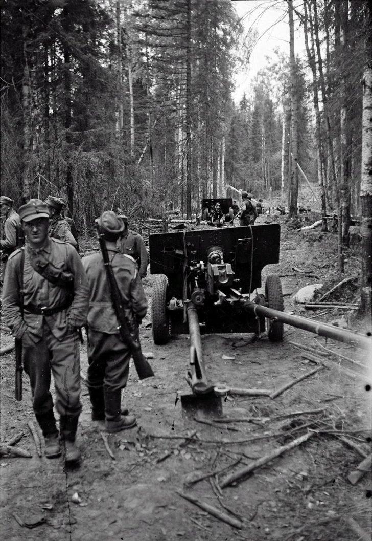 Finnish soldiers, ZiS-3 guns