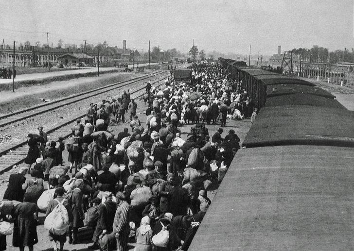 Prisoners of Auschwitz