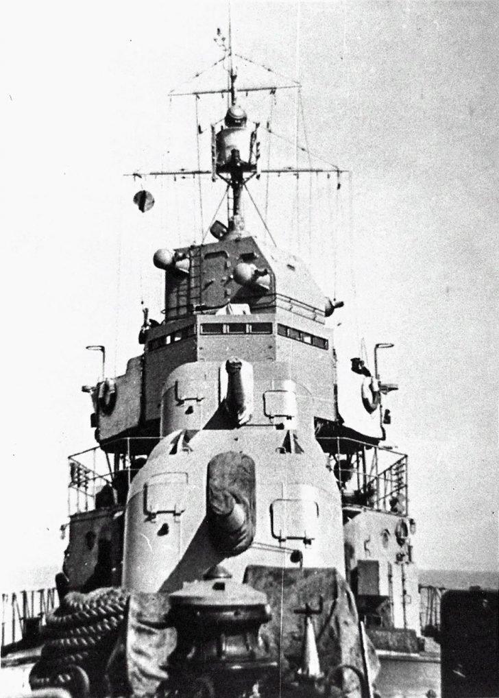 destroyer Revnostny