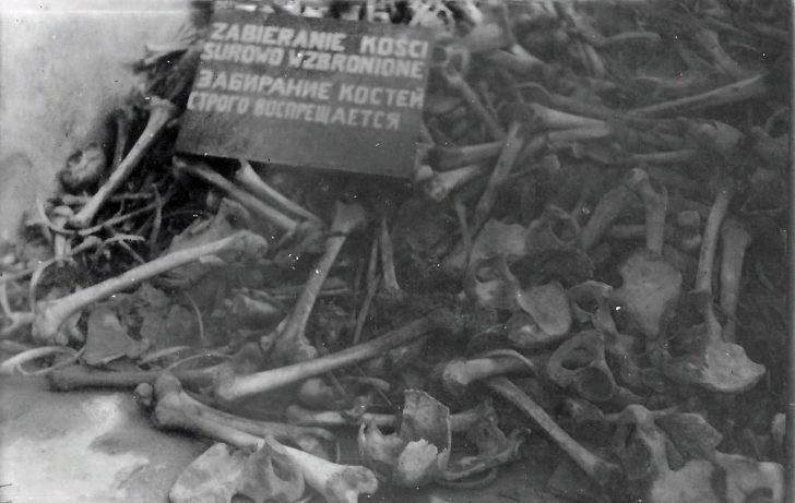 Majdanek concentration camp prisoners