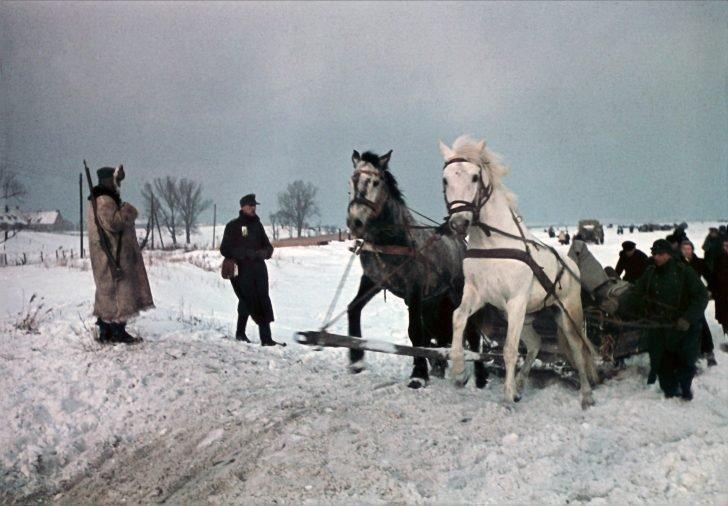Königsberg refugees