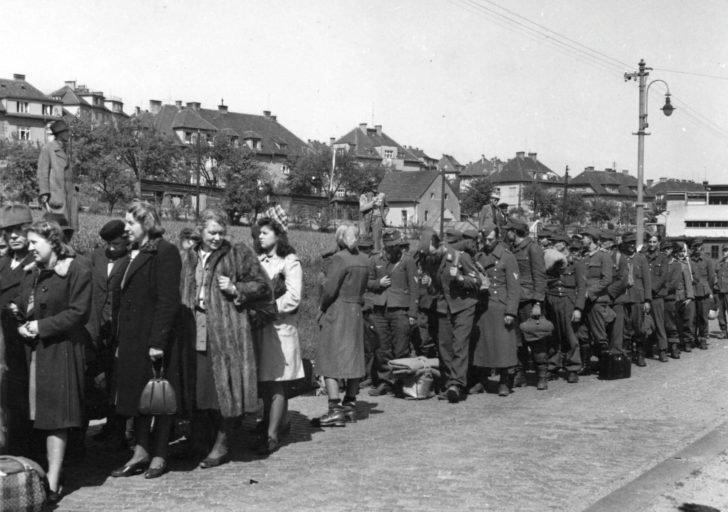 Sudeten Germans, prisoners of the Wehrmacht