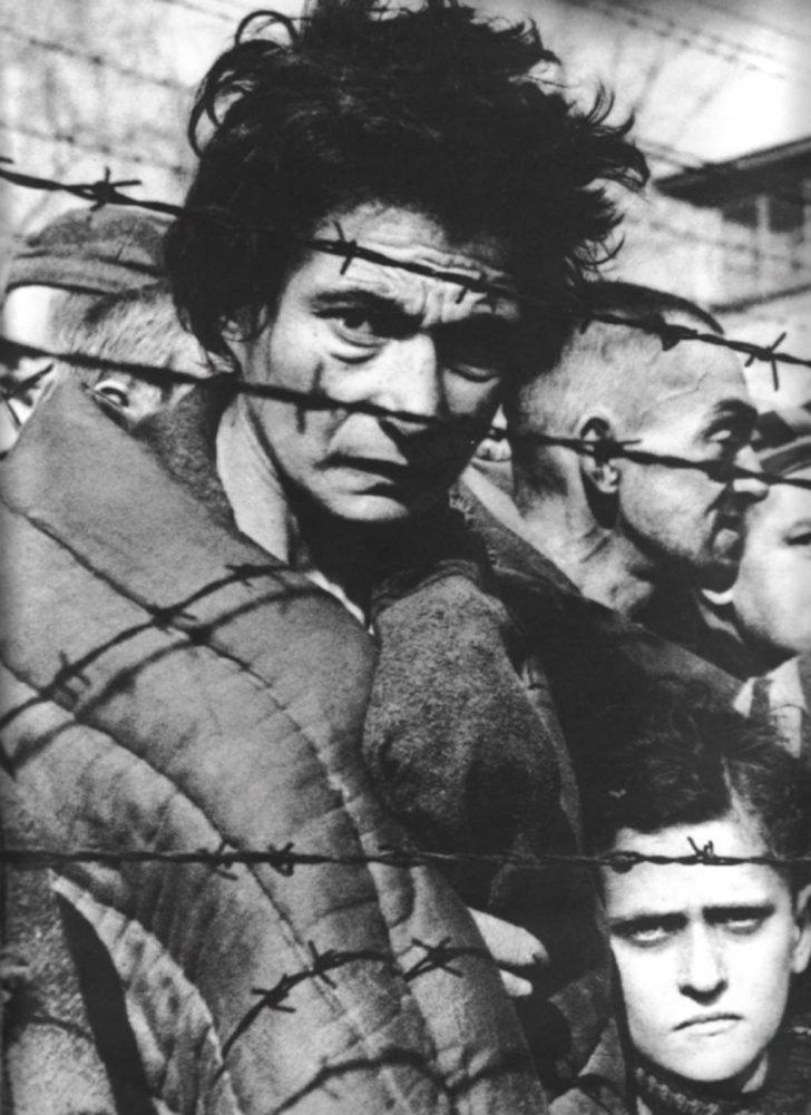Prisoners of the Auschwitz