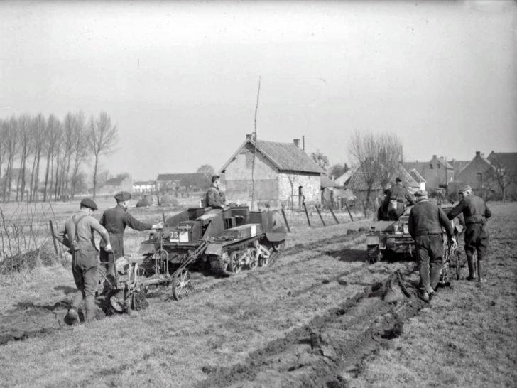 British servicemen