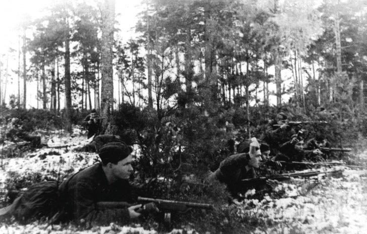 Russian partisans