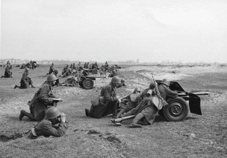 wz.36 anti-tank guns